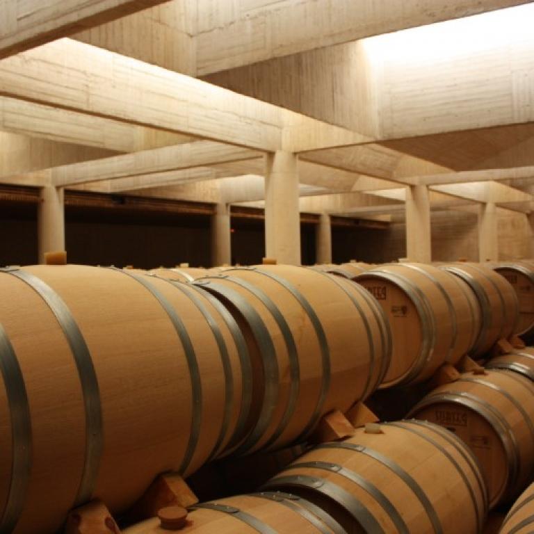 Casa de Laura - El Entorno - Ribera del Duero, Ruta del Vino